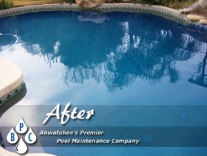 after green pool cleaning image ahwatukee az