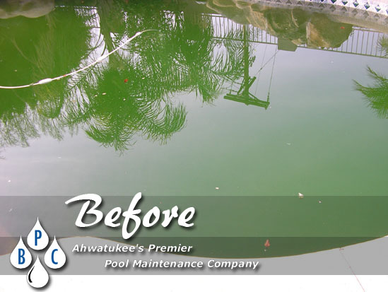 before green pool cleaning