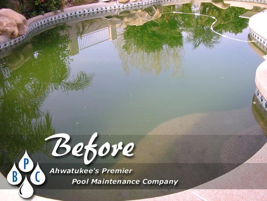 green pool cleaning before photo ahwatukee az