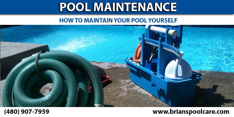 Pool Maintenance For Dummies 101 Guide Diy Brian 39 S Pool Care