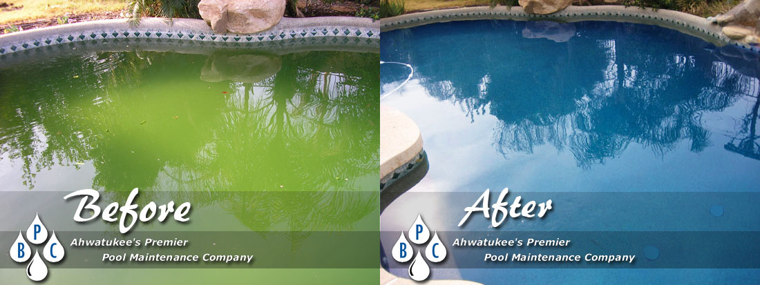 Pool Cleaning Photo Gallery Before And After Photos Bpc Pool Maintenance Ahwatukee Arizona