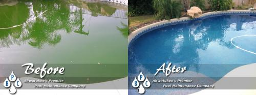 Ahwatukee Green Pool Cleaning Before And After Photo