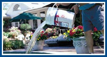 Pool Maintenance Ahwatukee
